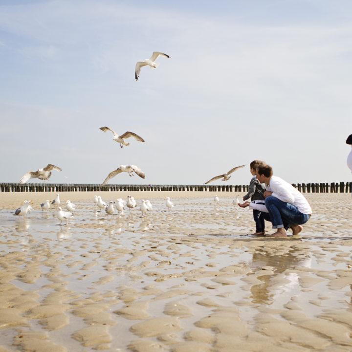 Gezinsfotografie in Domburg in Zeeland
